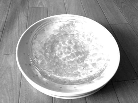断捨離した皿